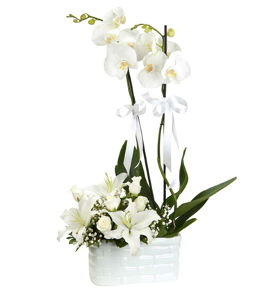 flower delivery turkey Orchids Lilly Roses