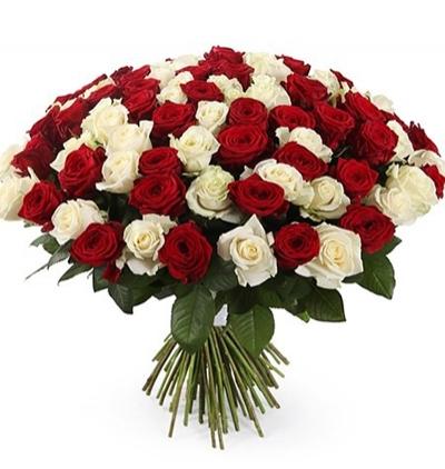 11 kırmızı gül buketi 101 Kırmızı Beyaz Güller