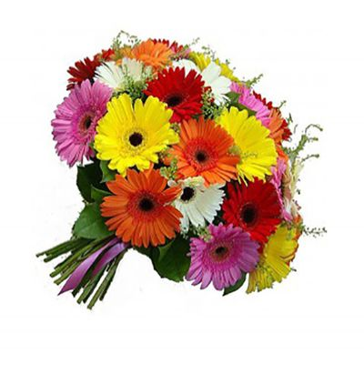 Çiçek Gerbera Buketi